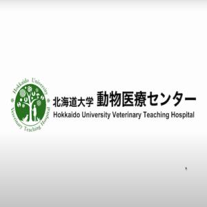北海道大学動物医療センター